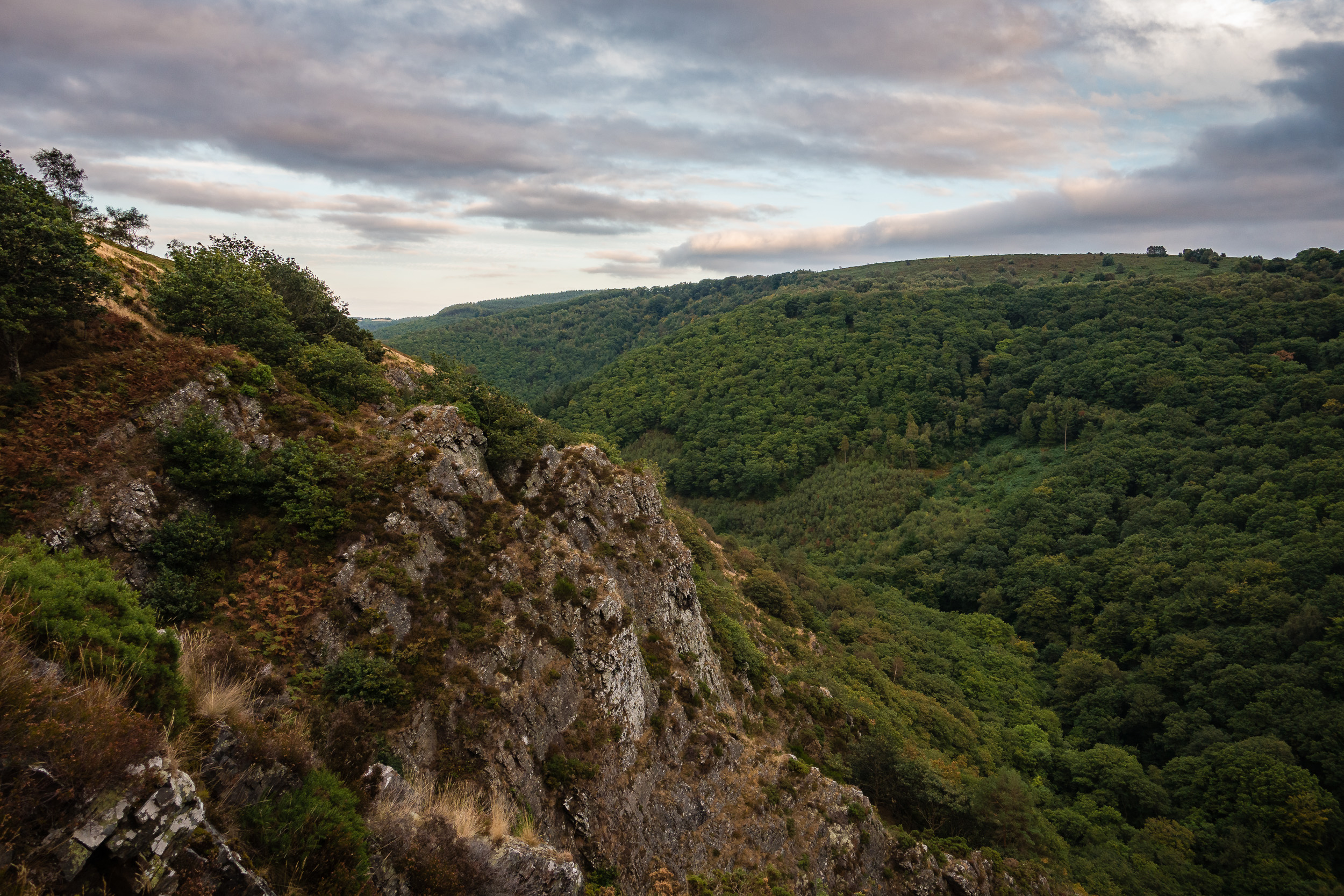 Teign Valley with Rocky Ledge