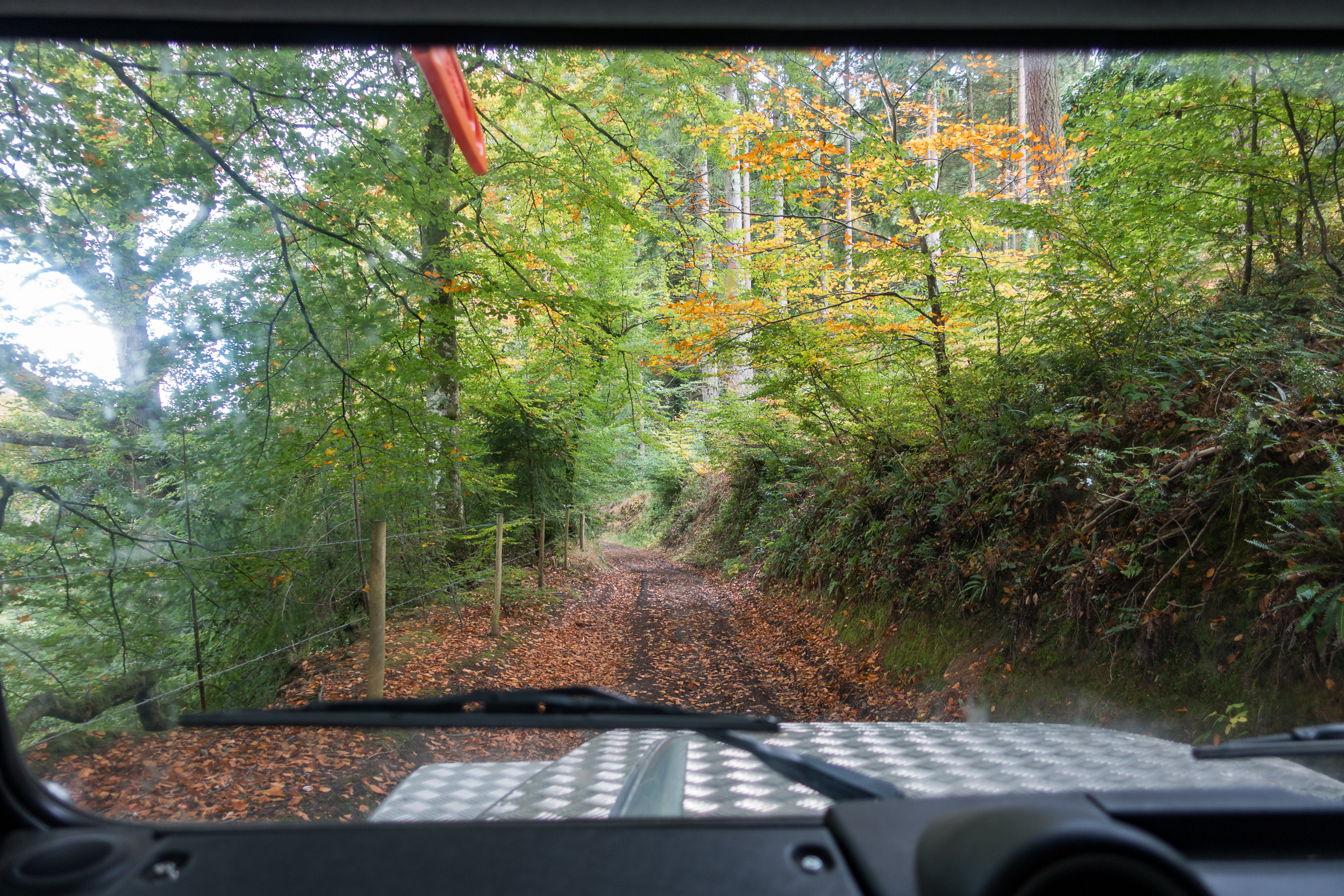 We drove some stunning autumn tracks.