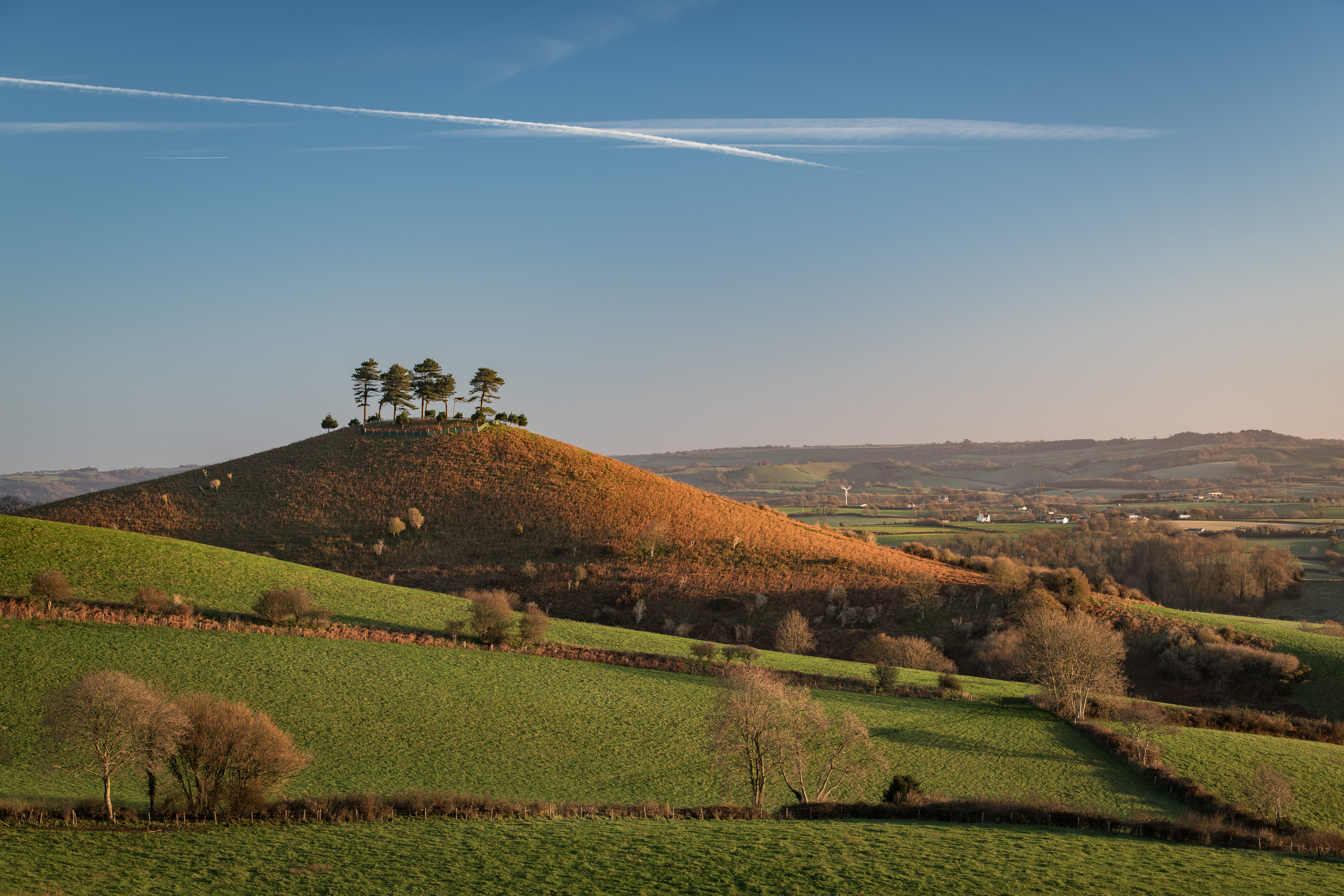Dawn on Colmer's Hill (Wide)