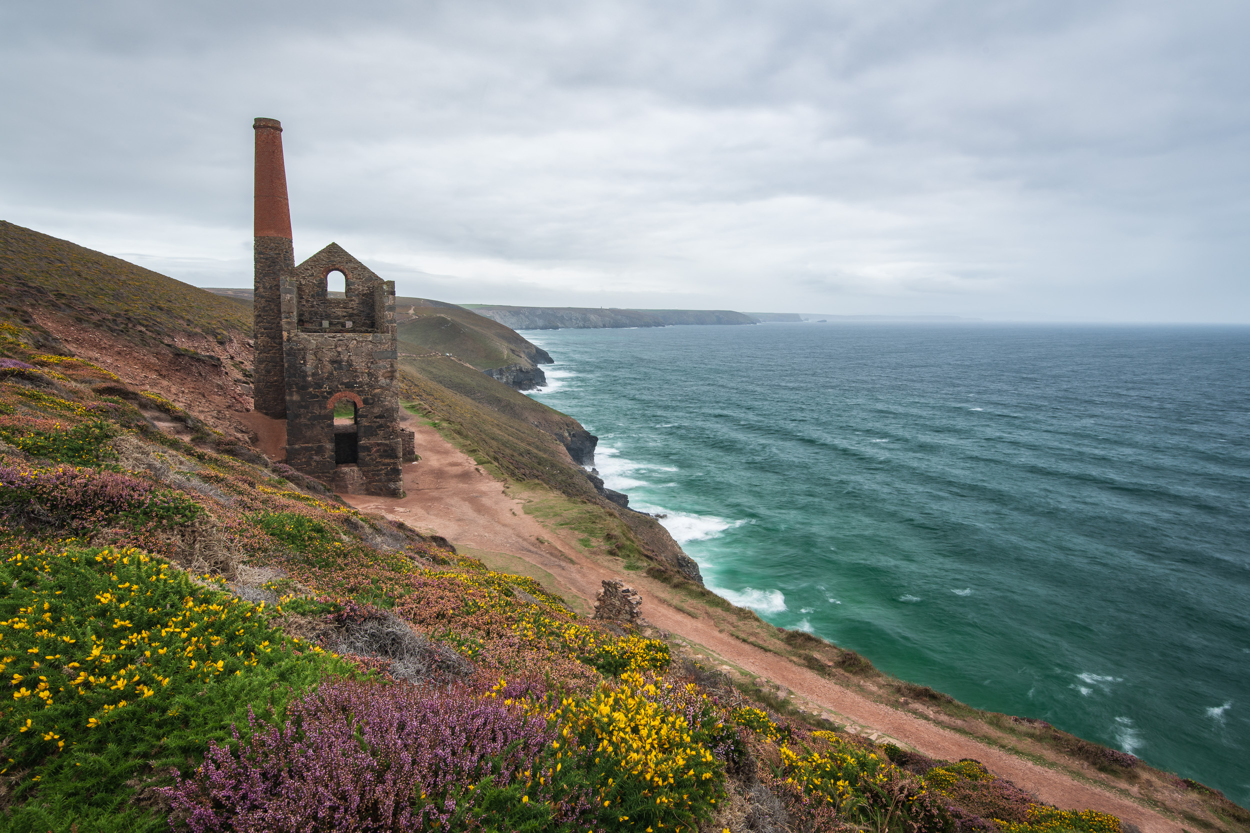 A Splash of Colour on a Grey Day at Wheal Coates #1, Cornwall