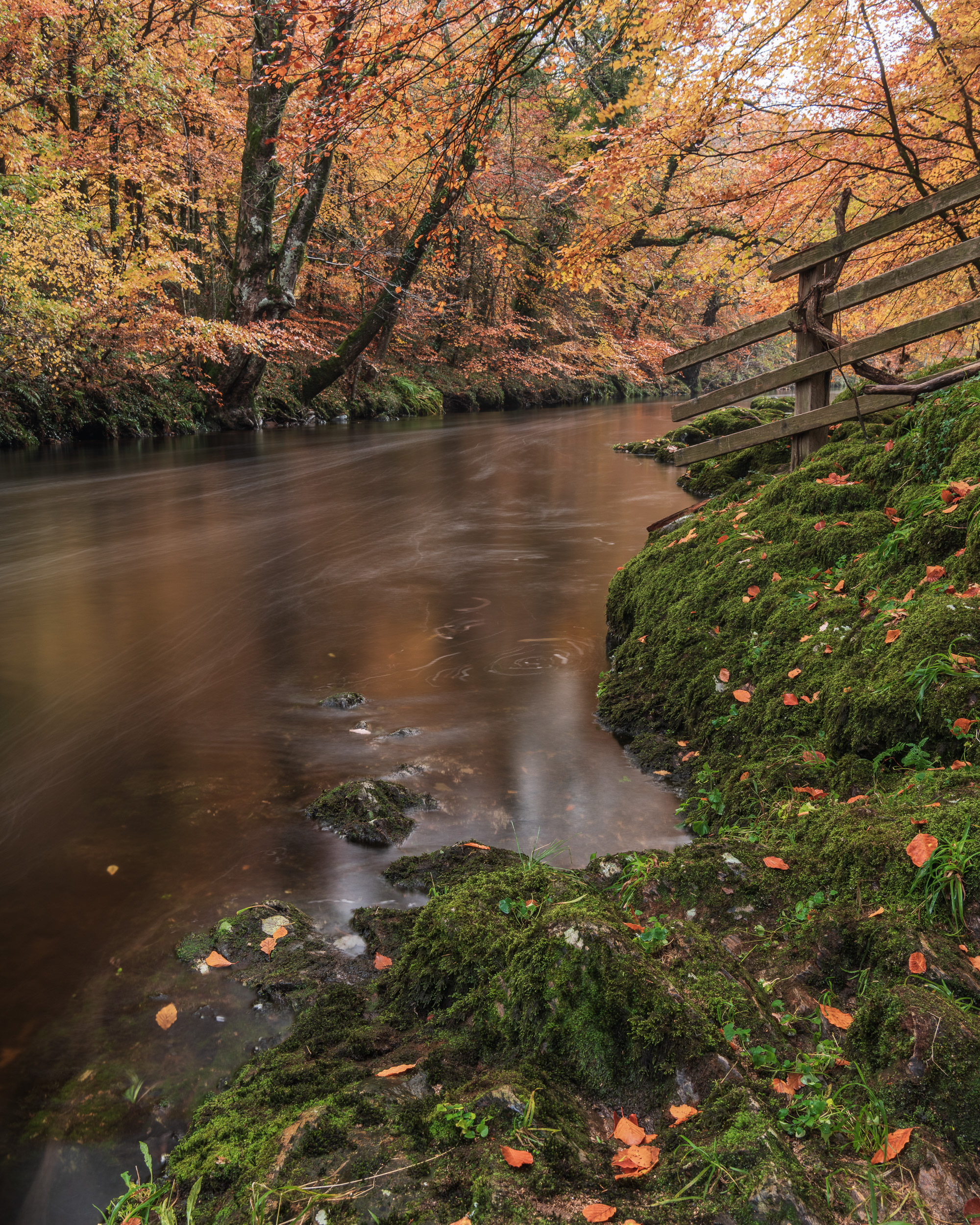 Autumn on the River Dart, Dartmoor, Devon  - Nikon D850, Nikkor 24-70 mm f/2.8 VR at 25 mm, f/13, 10 seconds at ISO 64, Lee Filters Circular Polariser and ND Grad.