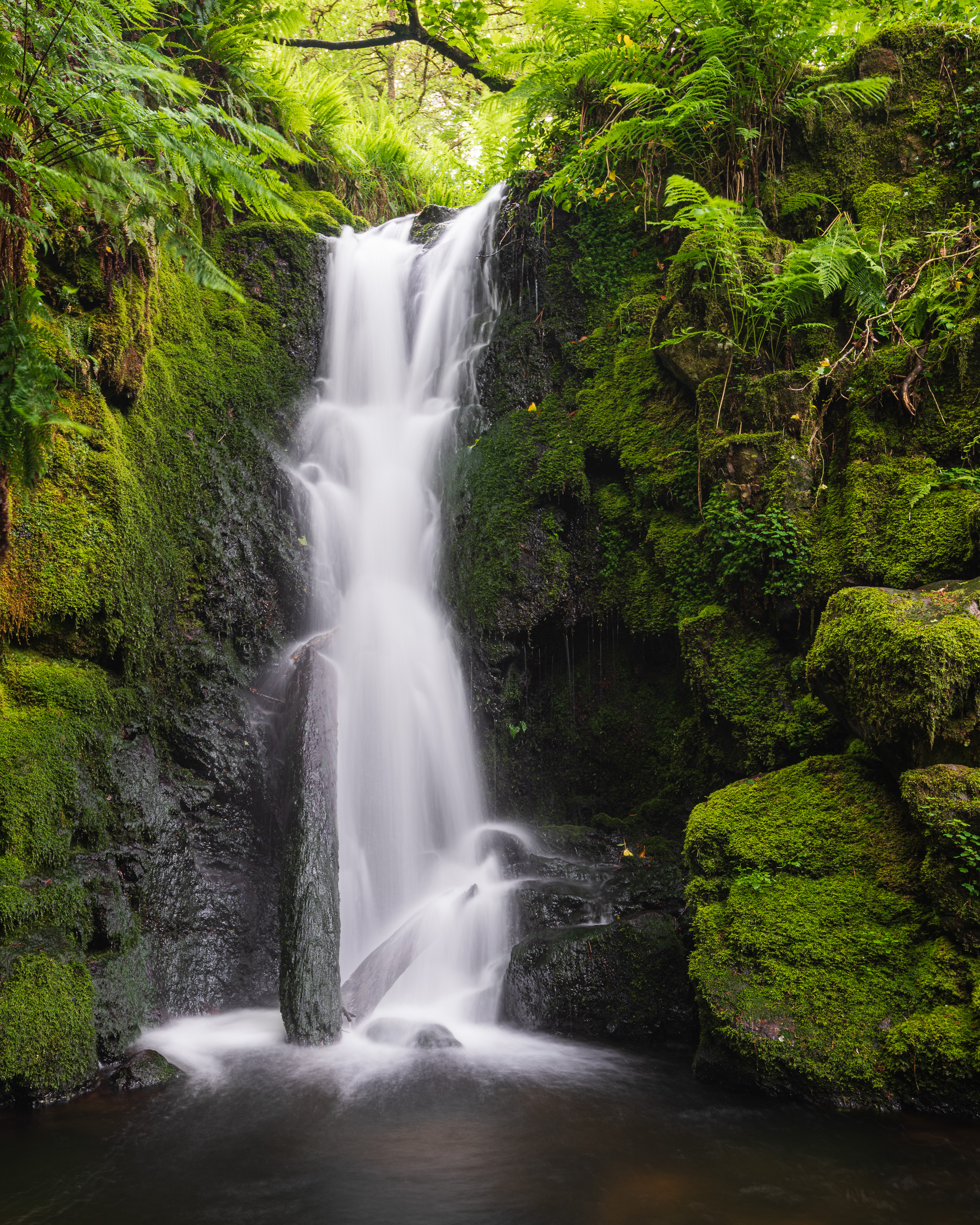 The Fall, Dartmoor, Devon  - Nikon D850, Nikkor 16-35 mm f/4 at 35 mm, f/11, 2.5 sec at ISO 64, Kase CPL.