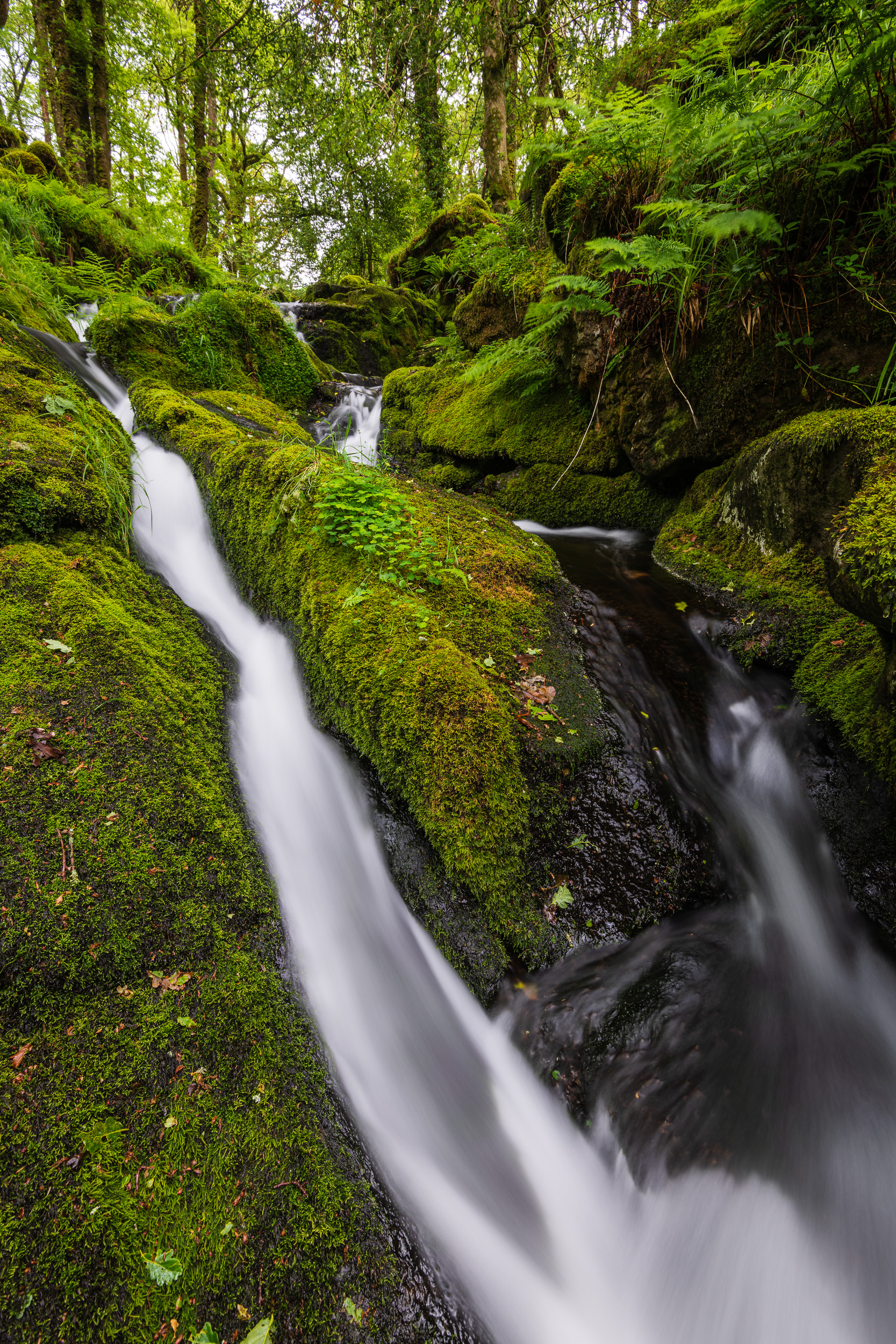 The Flow, Dartmoor, Devon  - Nikon D850, Nikkor 16-35 mm f/4 at 16 mm, f/11, 2.5 sec at ISO 64, Kase CPL.