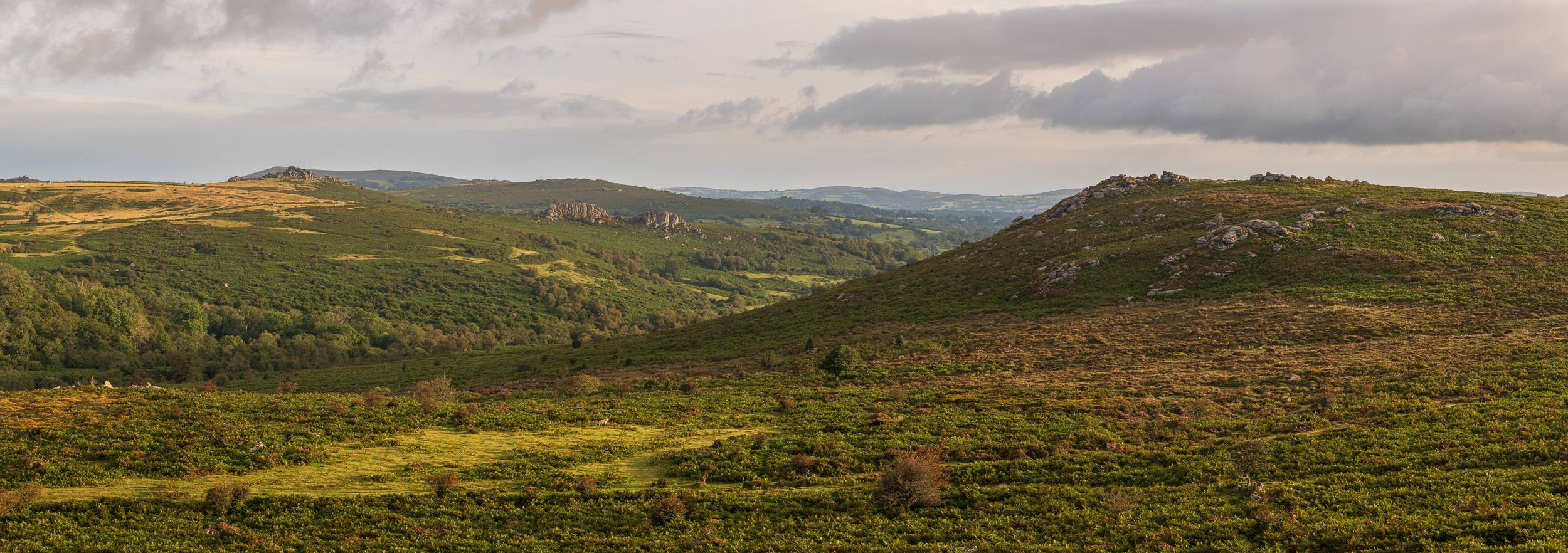 Houndtor, Greator Rocks and Holwell Tor Panorama, Dartmoor, Devon  - Nikon D850, Nikkor 24-70 mm f/2.8 at 70 mm, f/8, 1/40th sec at ISO 64, 8 image panoramic cropped to 6:17.