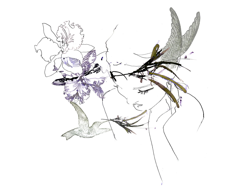 swarovski illustration