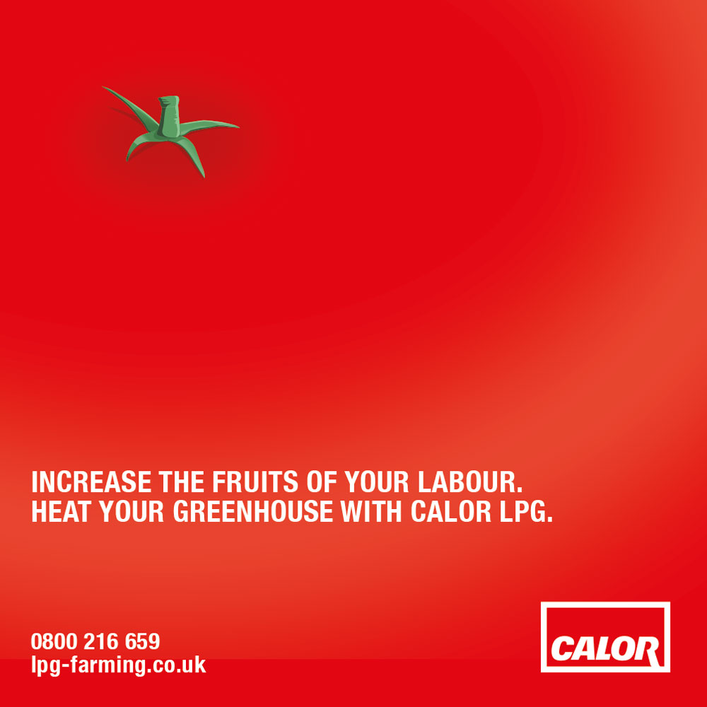 Press advertising. Concept. Design. Artwork.   With limited ad space (and time) we created an award-winning piece of work which immediately informed the customer of the benefits of using Calor LPG.   Commissioned at Connect.  connect-group.com