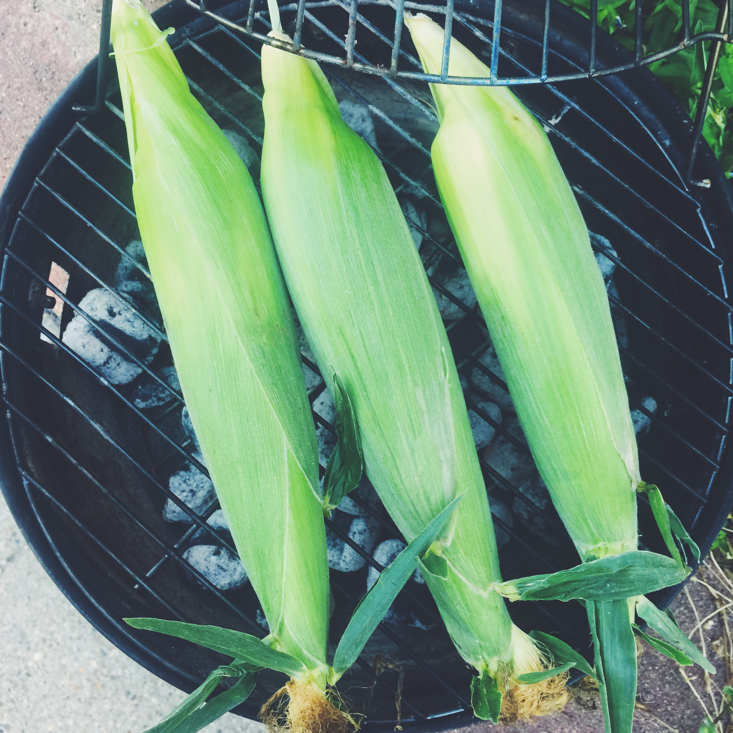 corn on the grill!