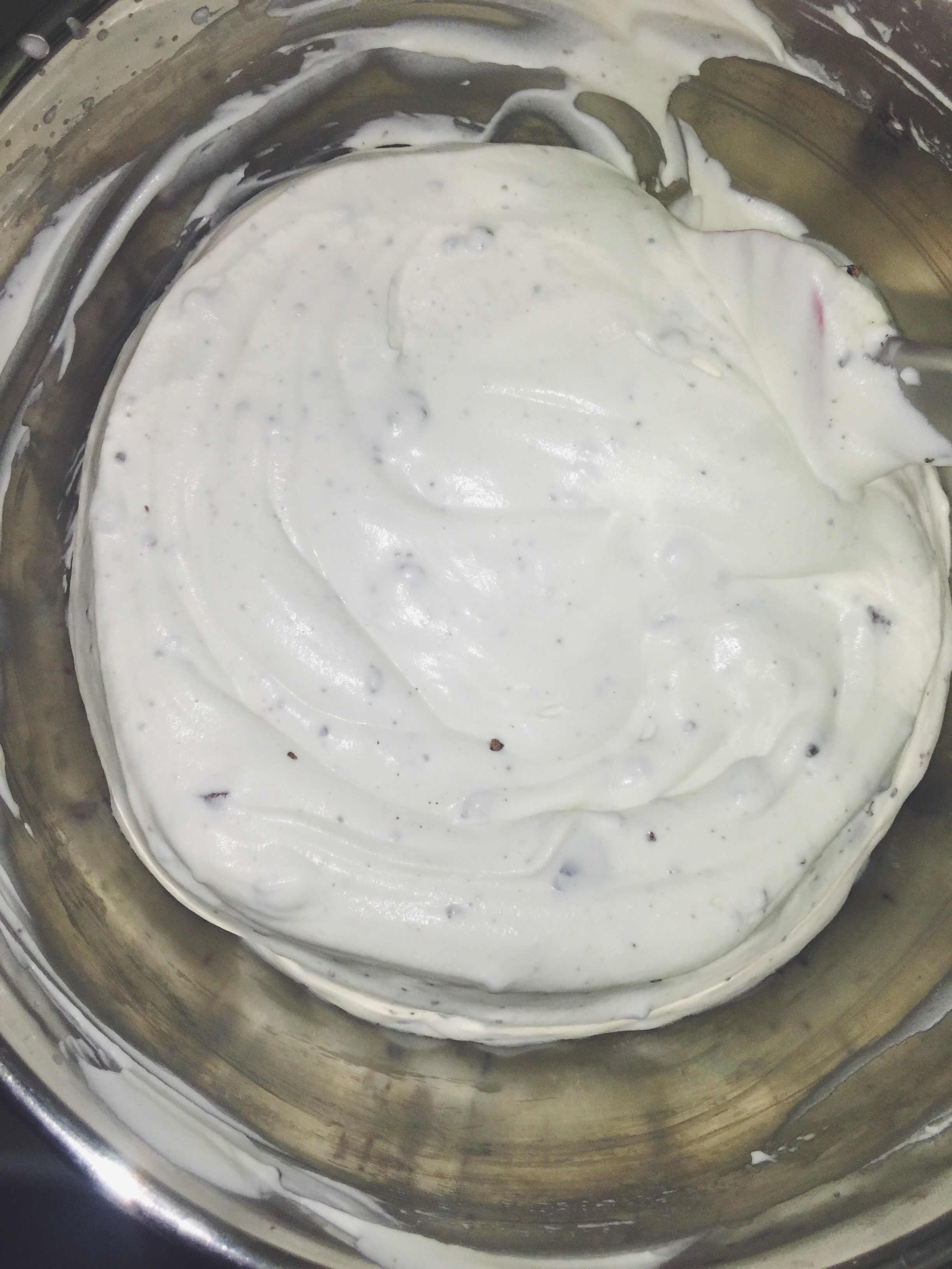 mint chip ice cream mixture