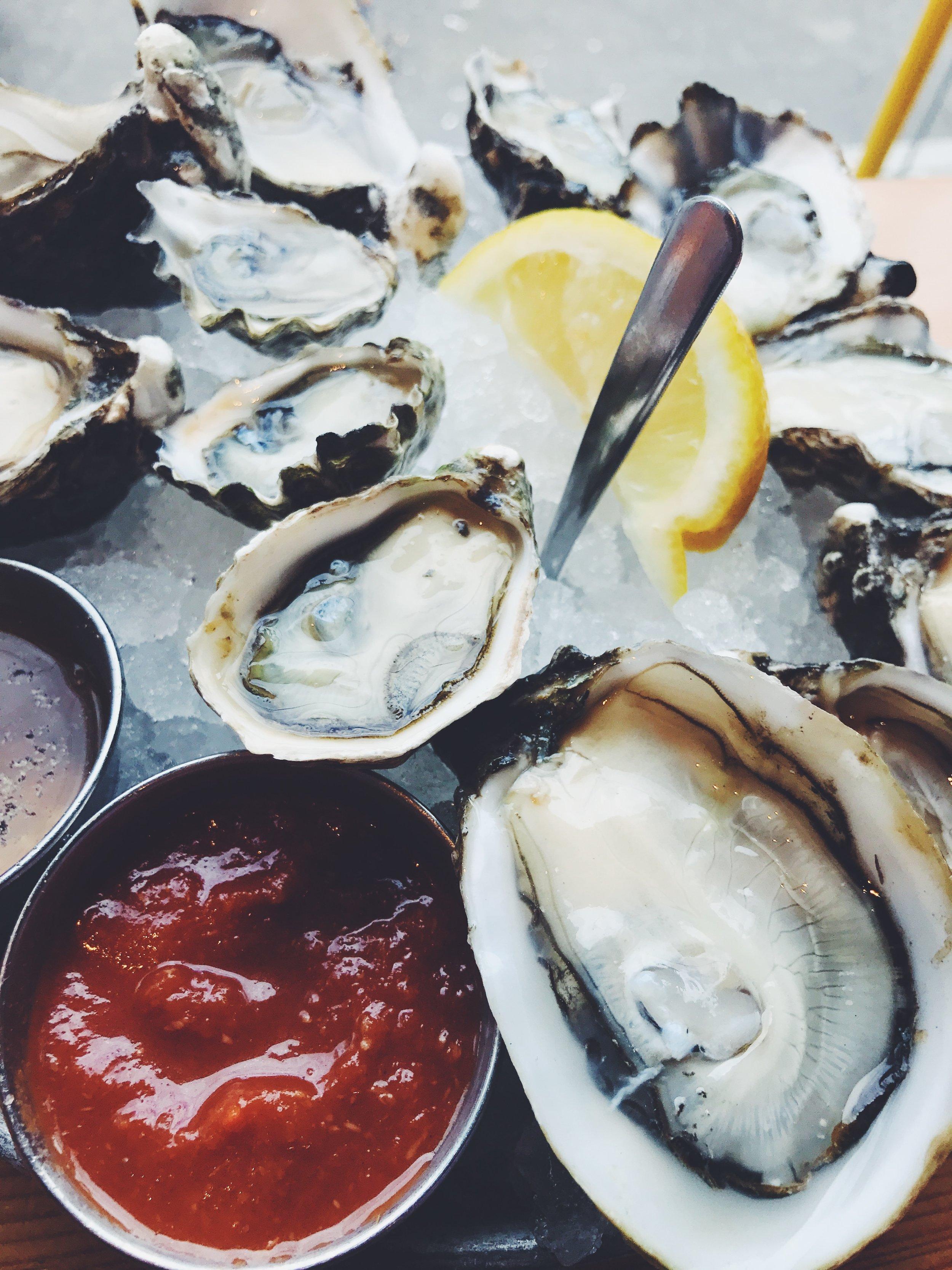 taylor shellfish oysters