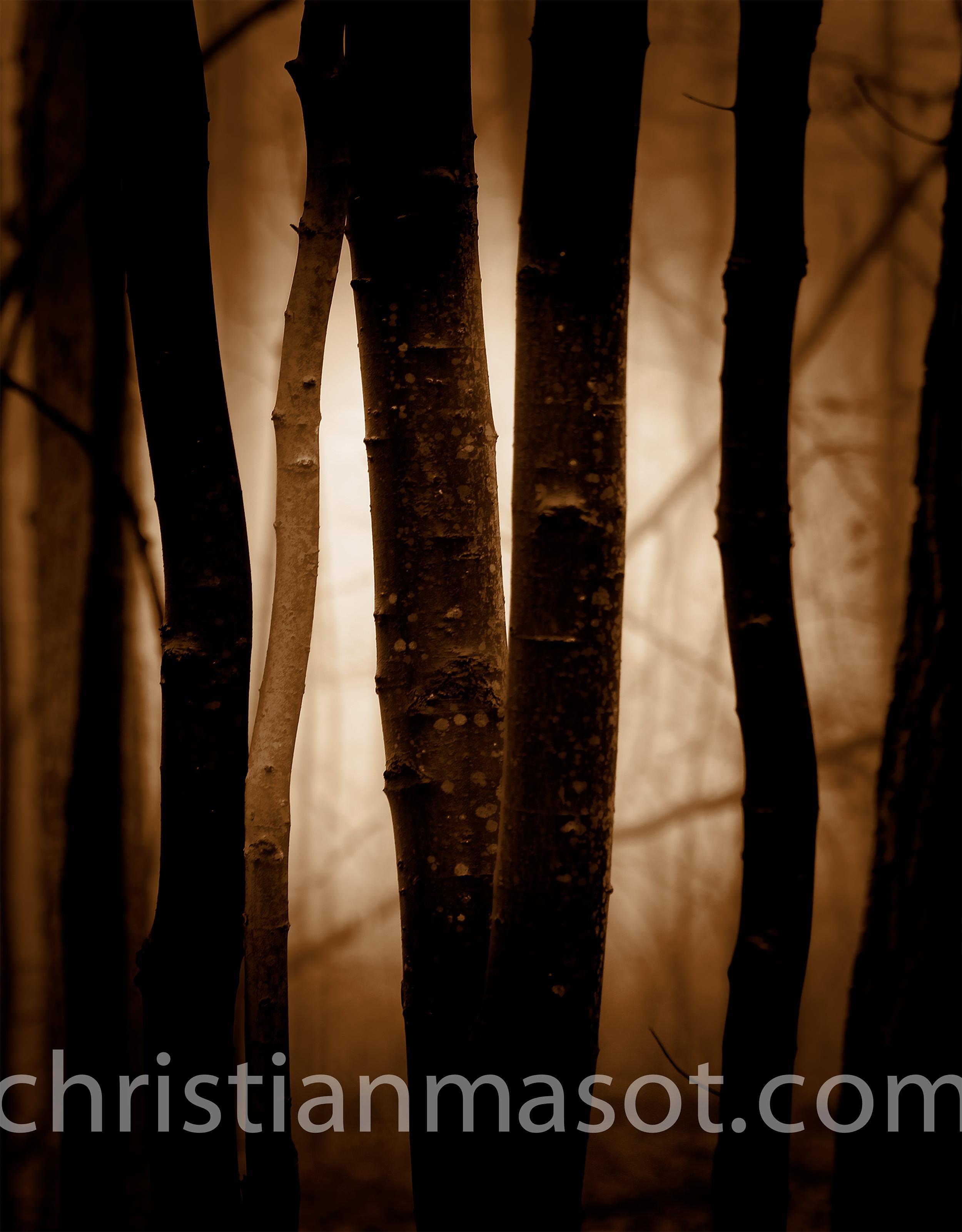 christianmasot-10.jpg
