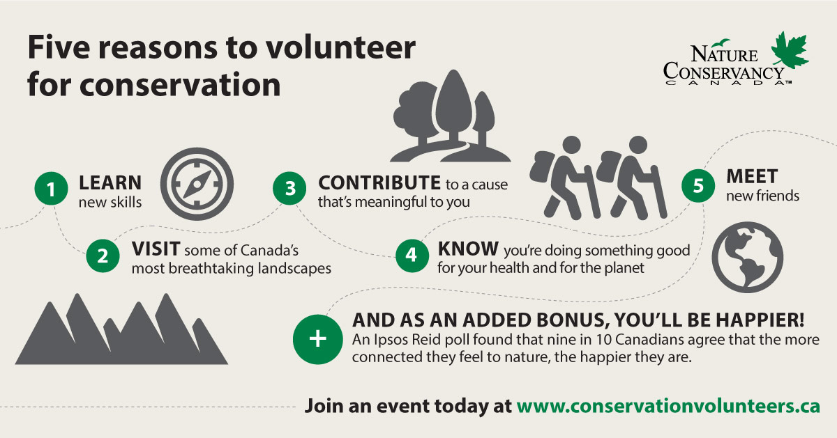 Five reasons to volunteer for conservation with Nature Conservancy Canada