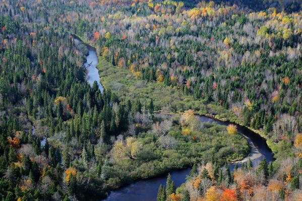 Bartholomew River, Miramichi, NB (Photo by Mike Dembeck)