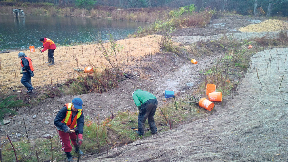 Volunteers installing live stakes to stabilize and restore the banks of the newly created stream channel in Creemore, ON.