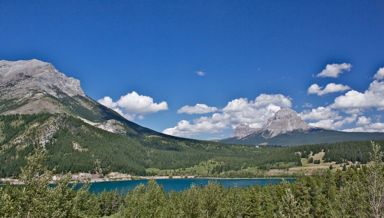 Montane Forest Region