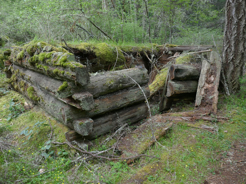 The ruins of a log outbuilding next to the house