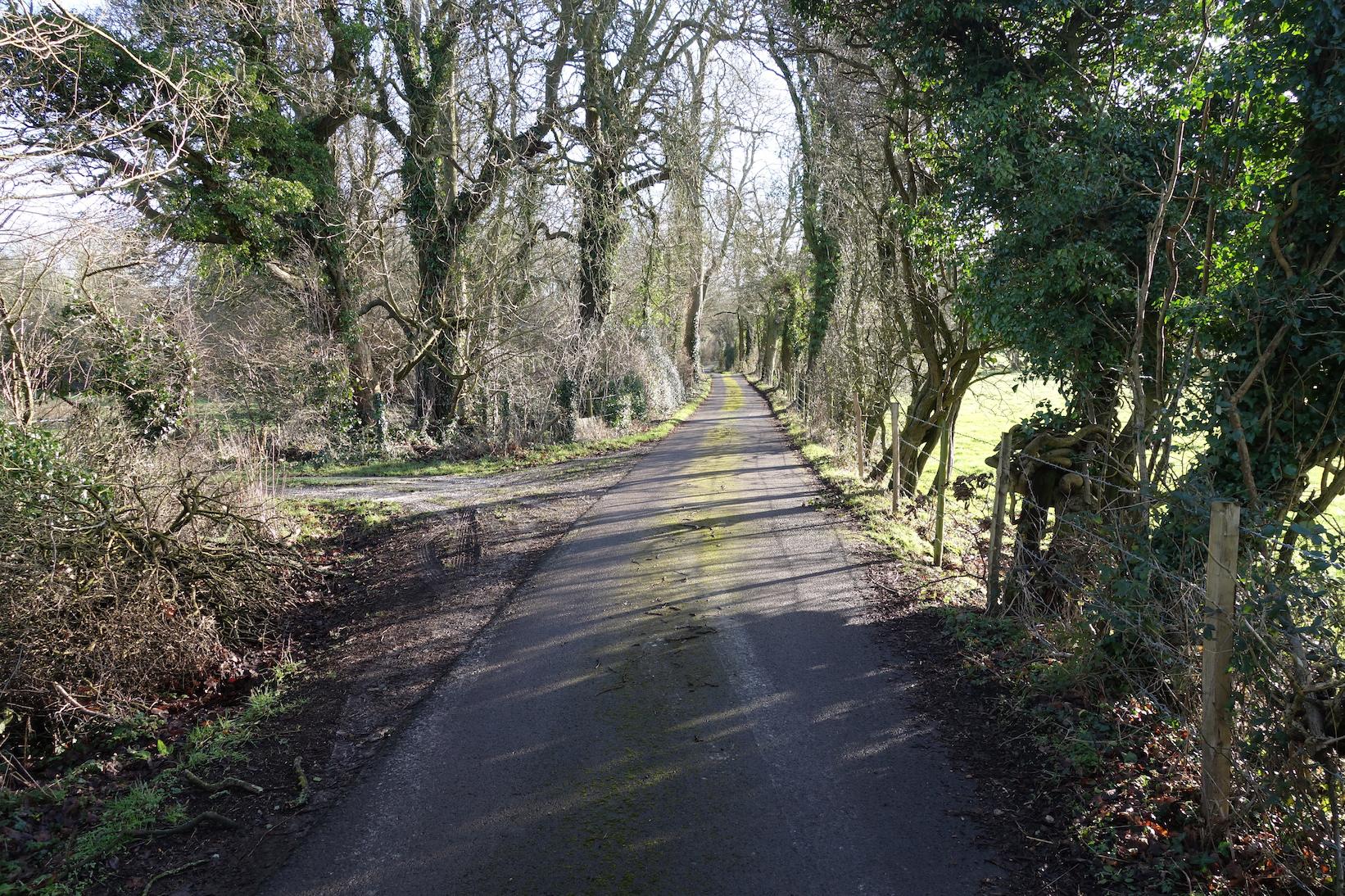 Roadway trail