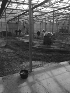 Our team running PVC conduit under the grade inside the new building.