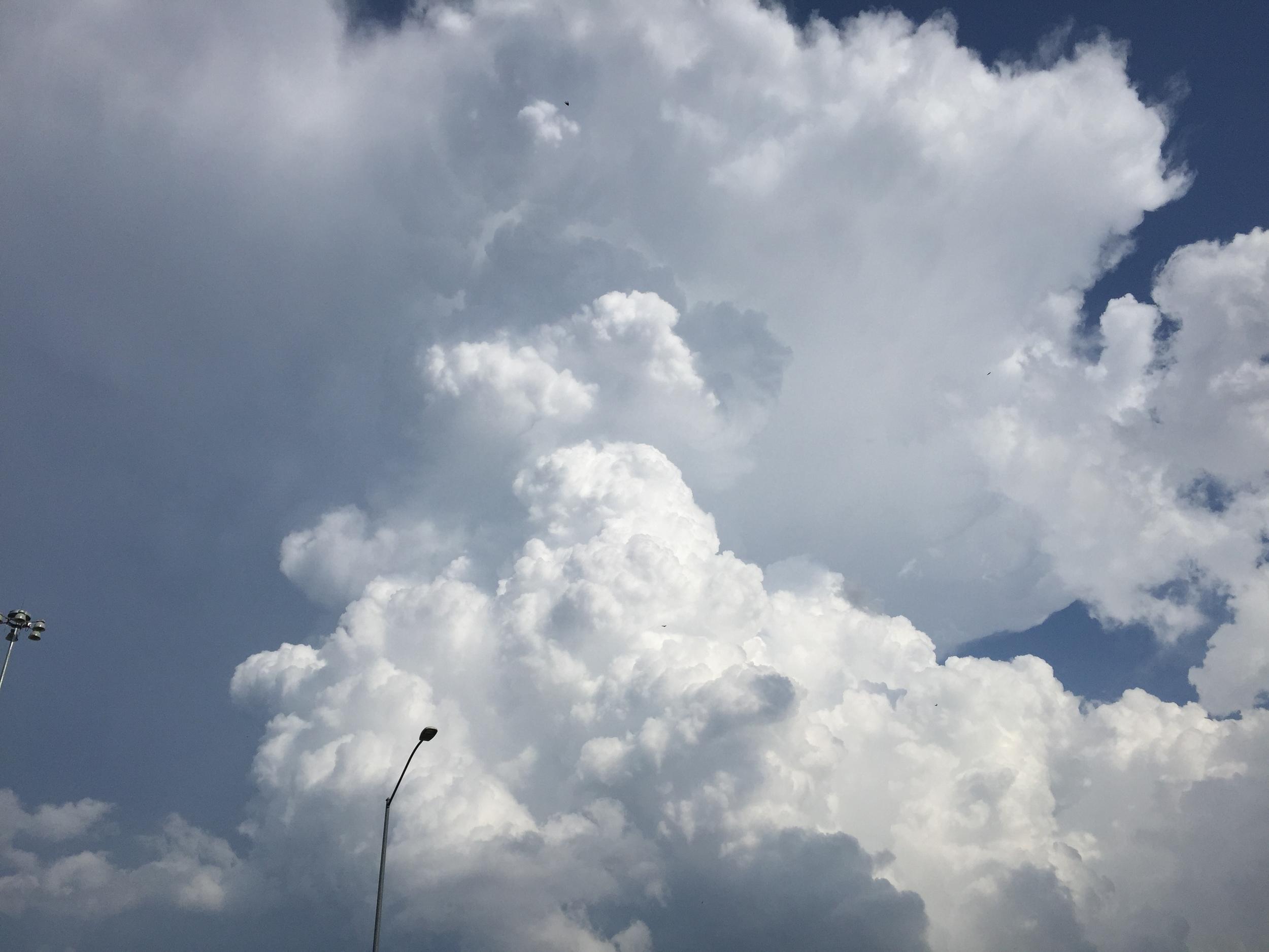 Photo May 22, 7 02 12 PM.jpg