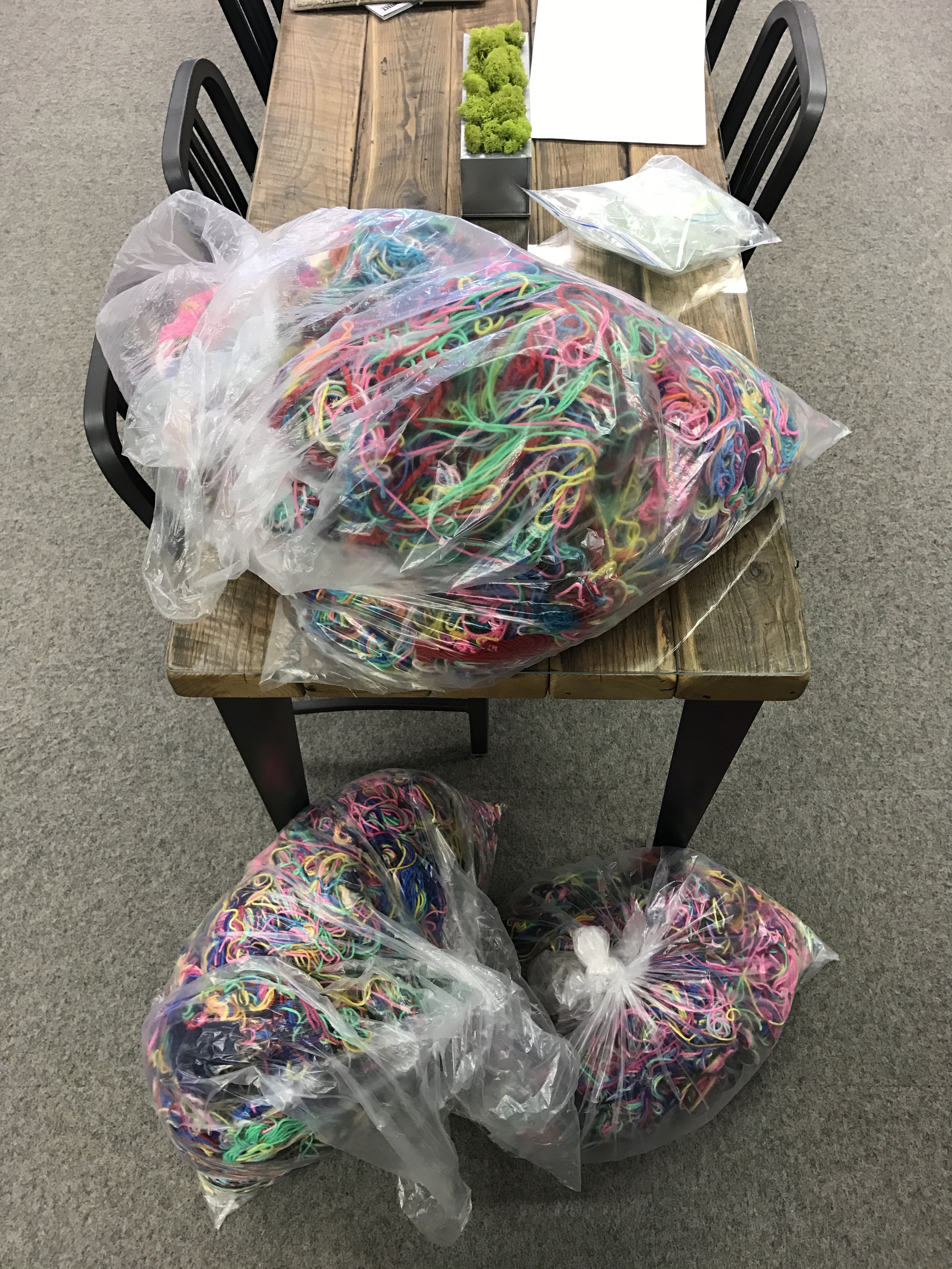 It took 3 garbage bags to collect all the yarn from this year's Shanty.