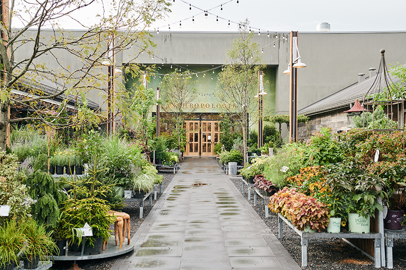 The lush entrance to Anthropologie at Devon Yard, designed by NewStudio Architecture