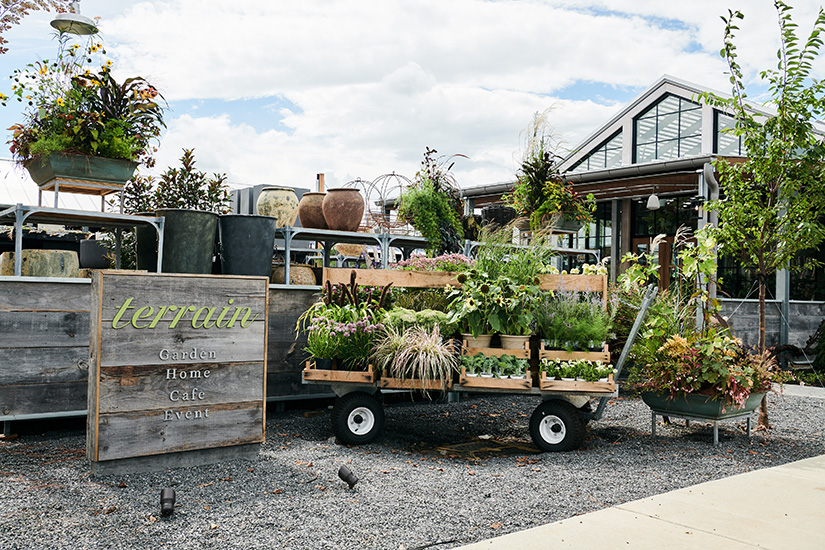 Terrain, the home and garden lifestyle brand, welcomes guests to Devon Yard