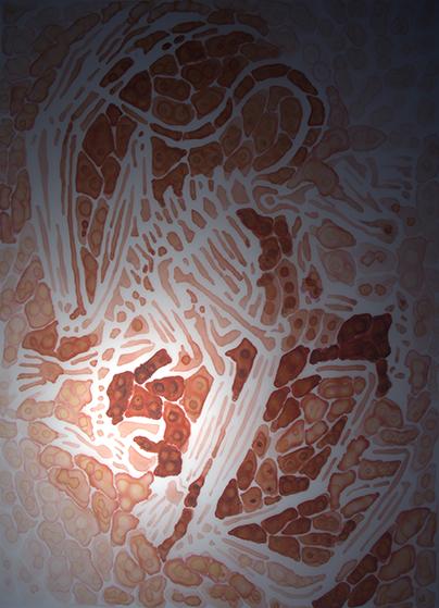 orange ep r 4.jpg