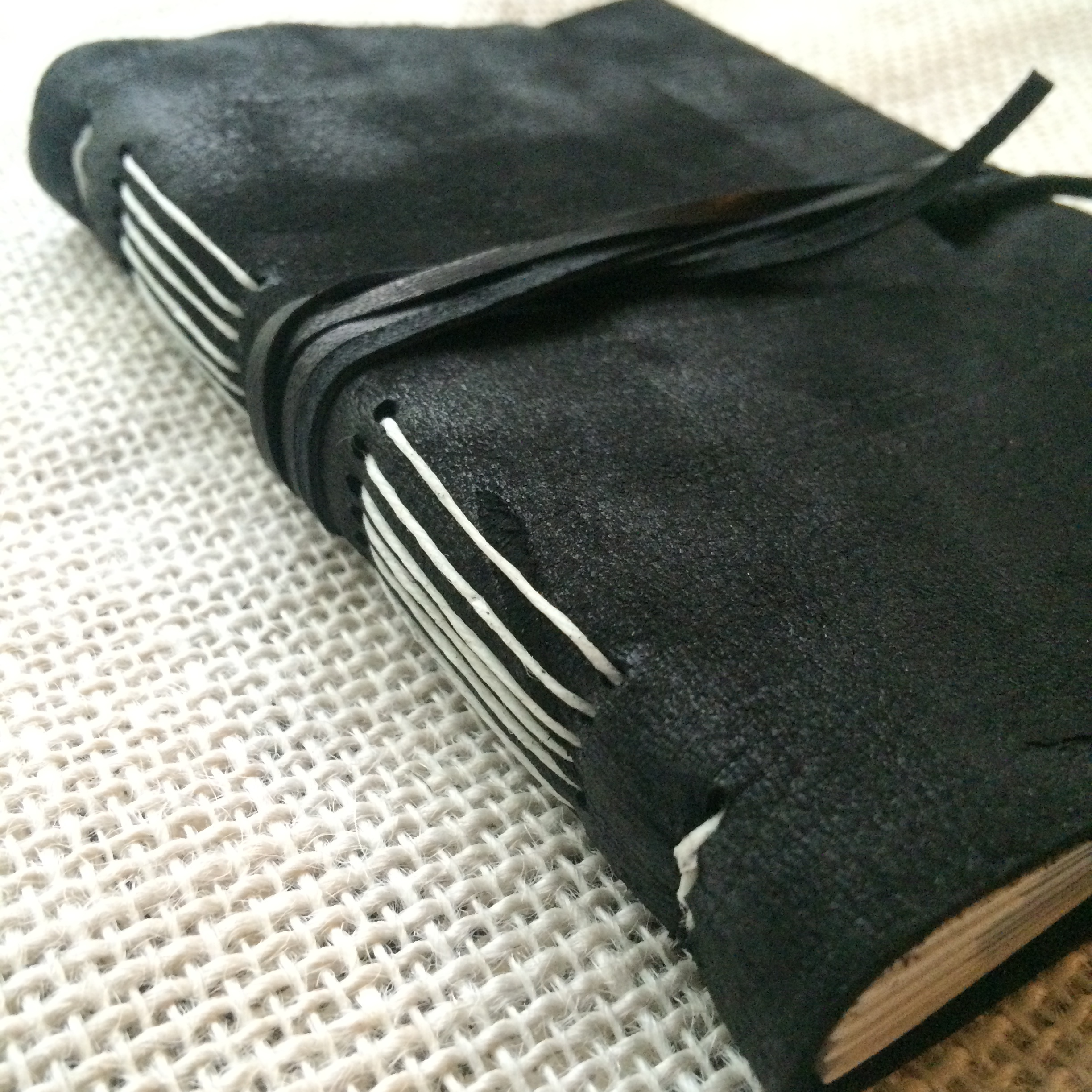 Soft light shows the velvety texture of this black deerskin