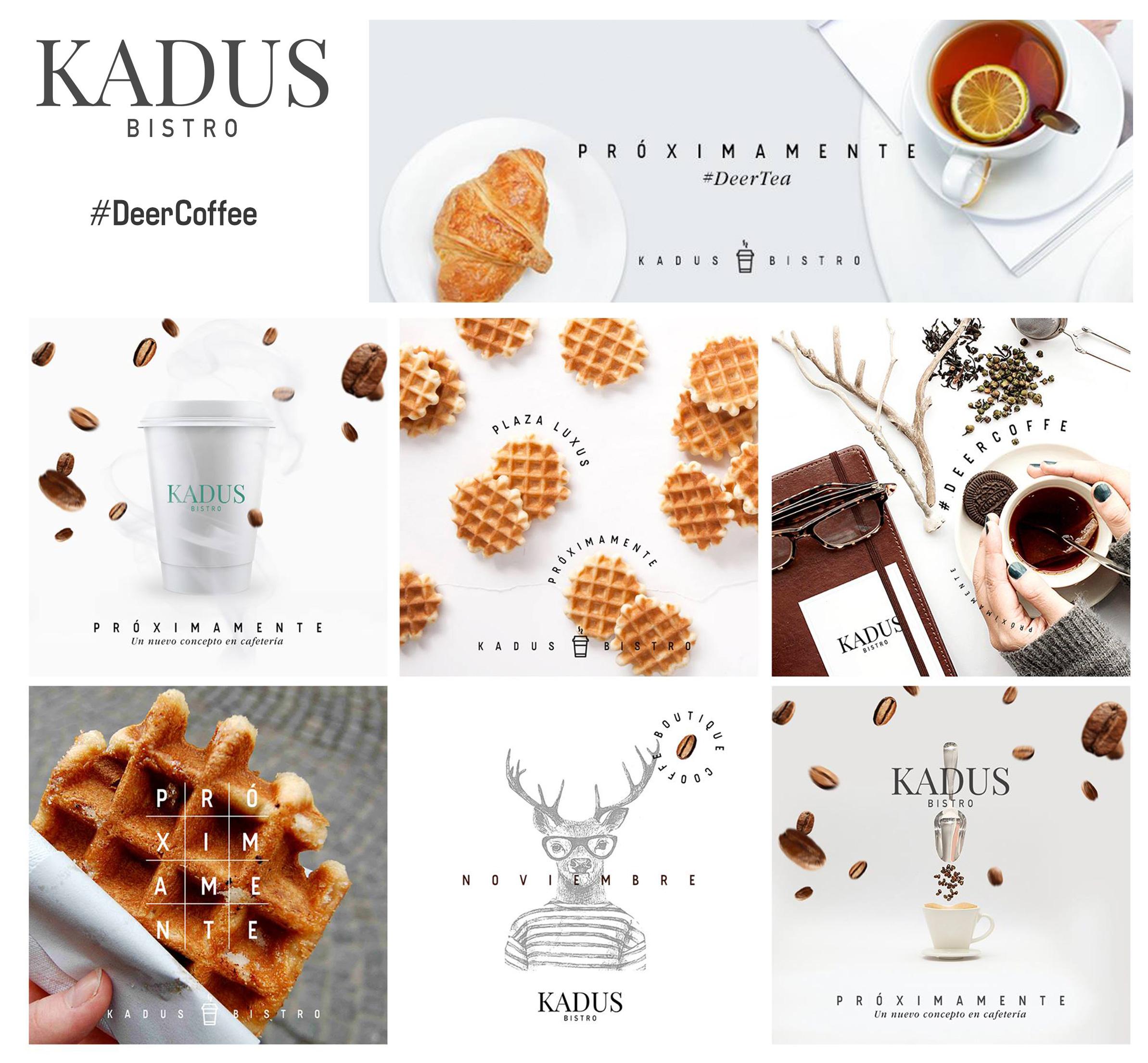 K A D U S  B I S T R O   Estrategia / Diseño / @kadusbistro / #DeerCoffee
