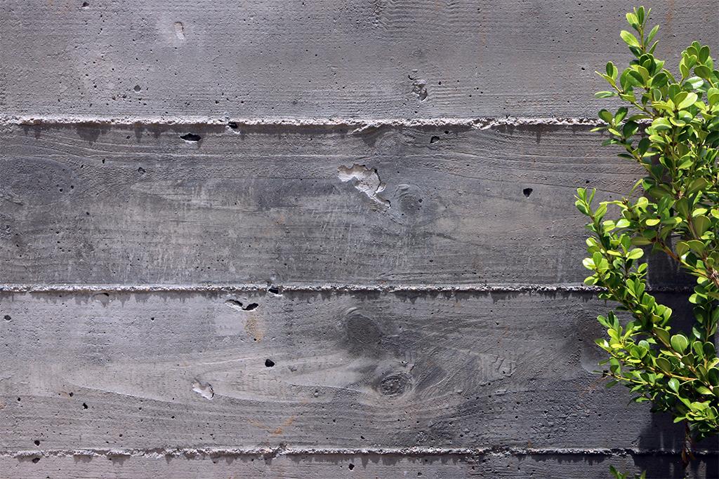 Orchard-14.jpg