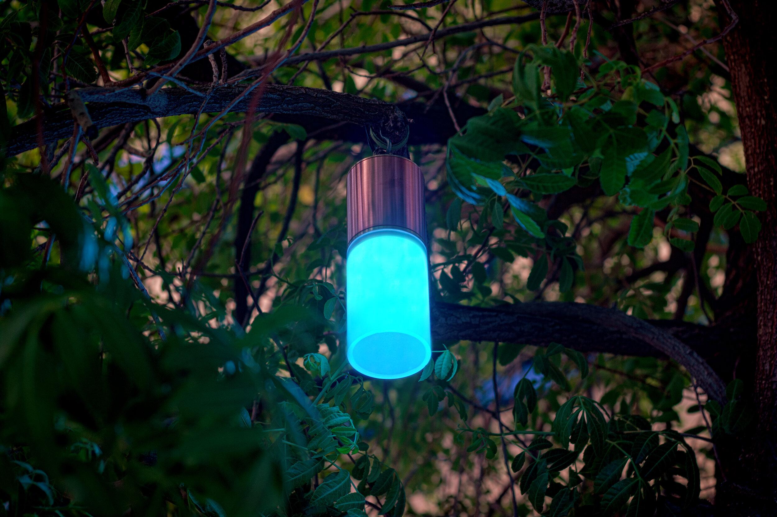 Brilliance Landscape Lighting