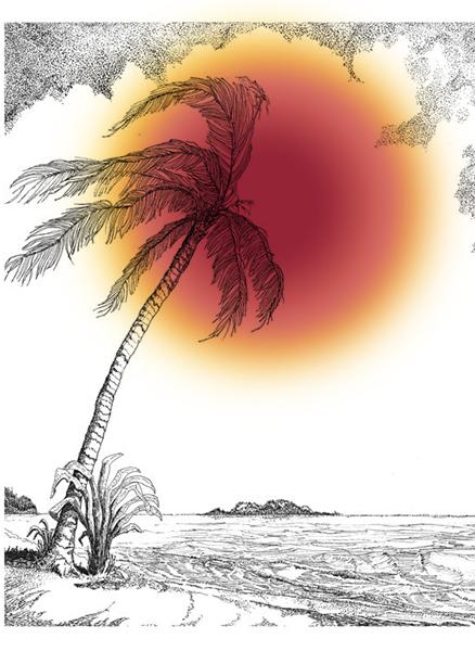Beach Palm Tree MATCH Color 2.jpg