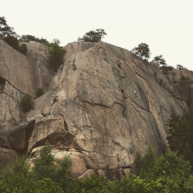 Bergsidan testar föret i Bohuslän. #bergsidan #friluftsframjandet #climbing #bohuslän