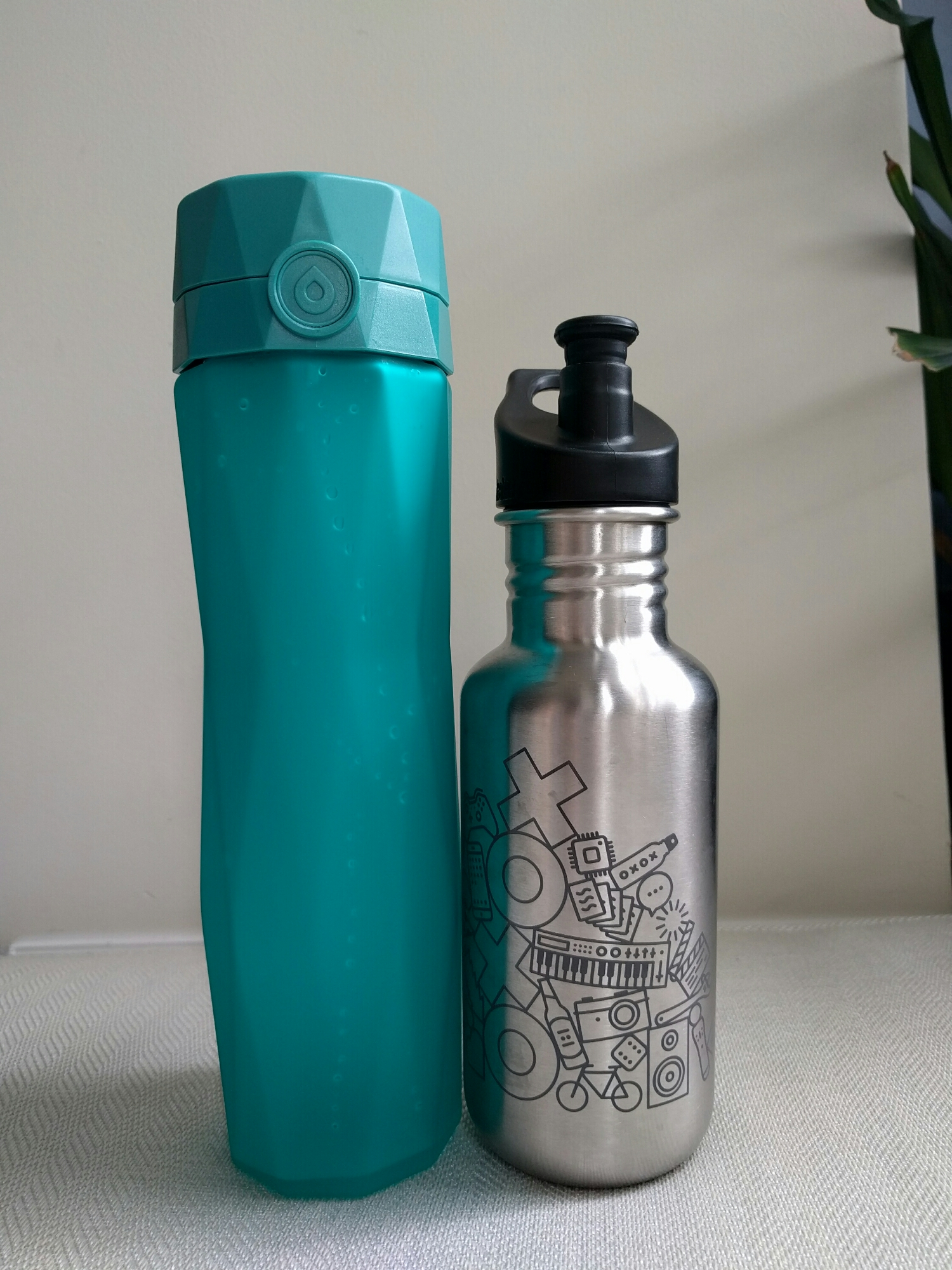 My go-to water bottle (kleen kanteen) for additional scale.