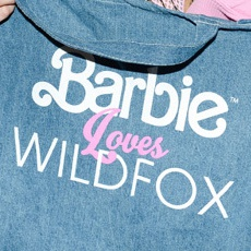 050 - Barbie x Wildfox.jpg