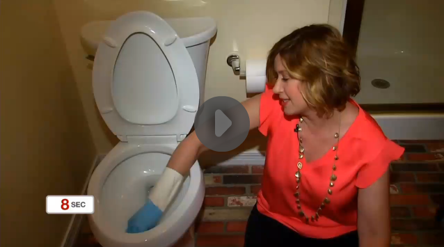 how-to-clean-your-toliet-rim-news-on-6-amy-bates