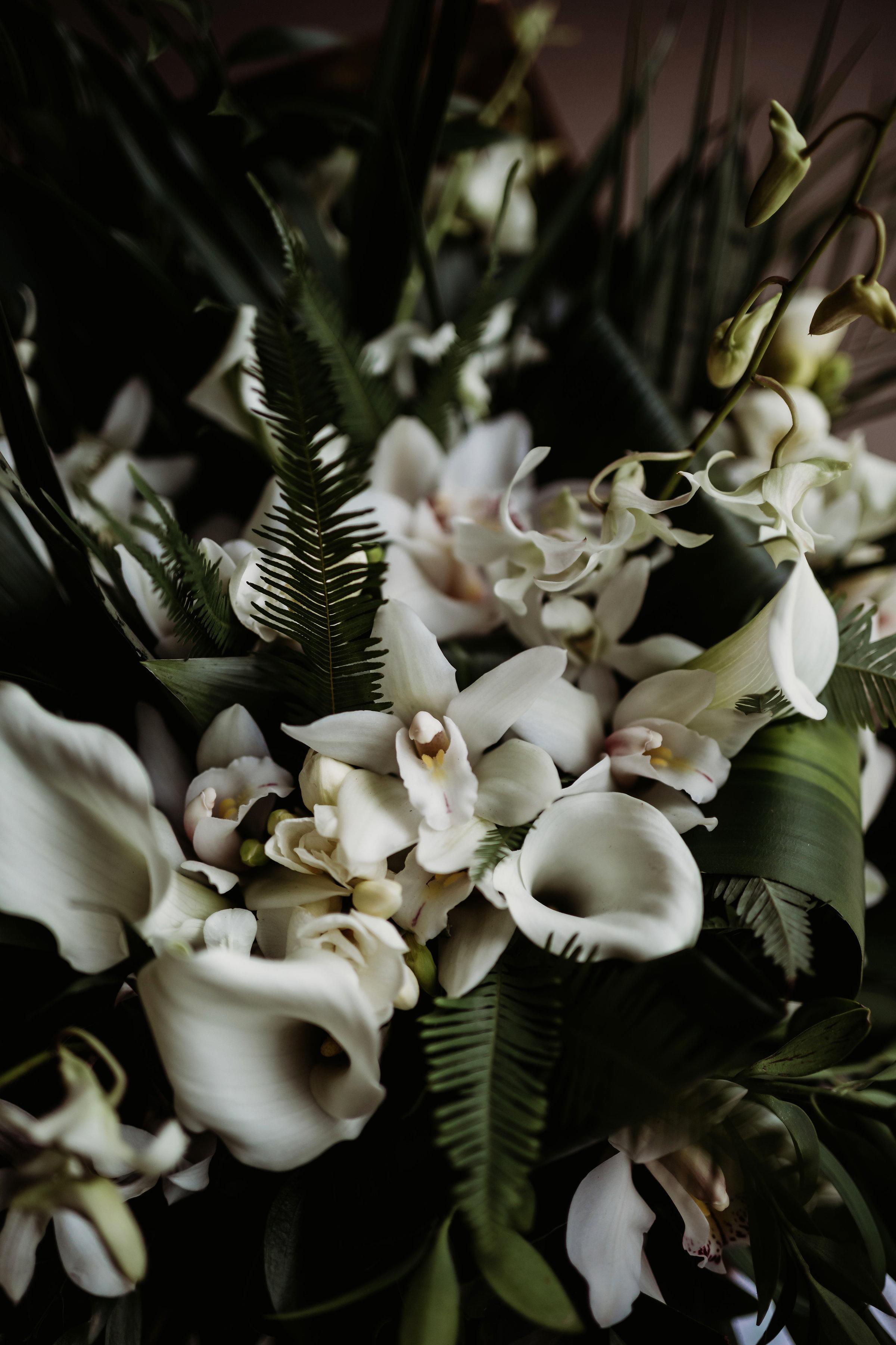 clewellphotography-49715.jpg