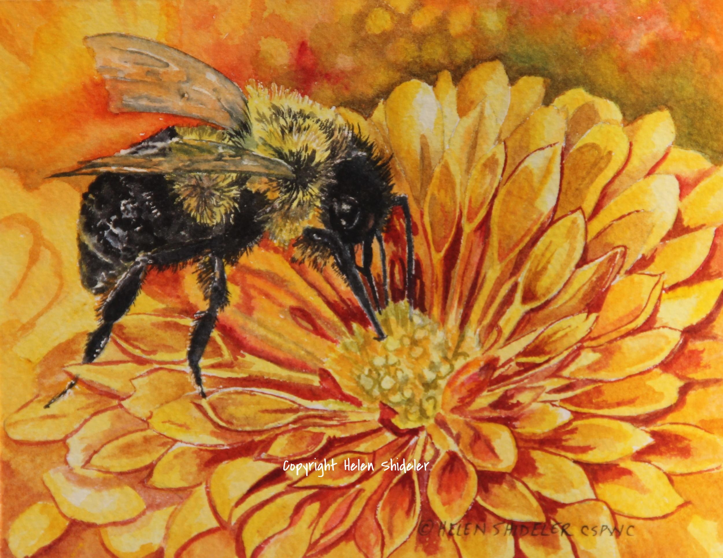 Sunny-Bee