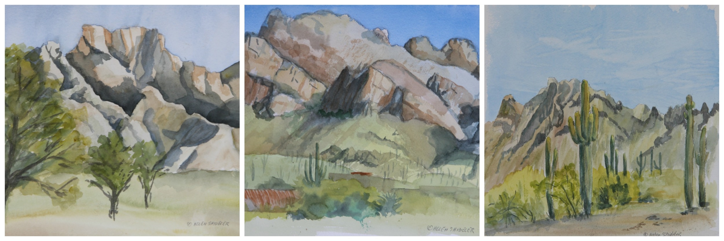 Shideler Plein Air Arizona 2016
