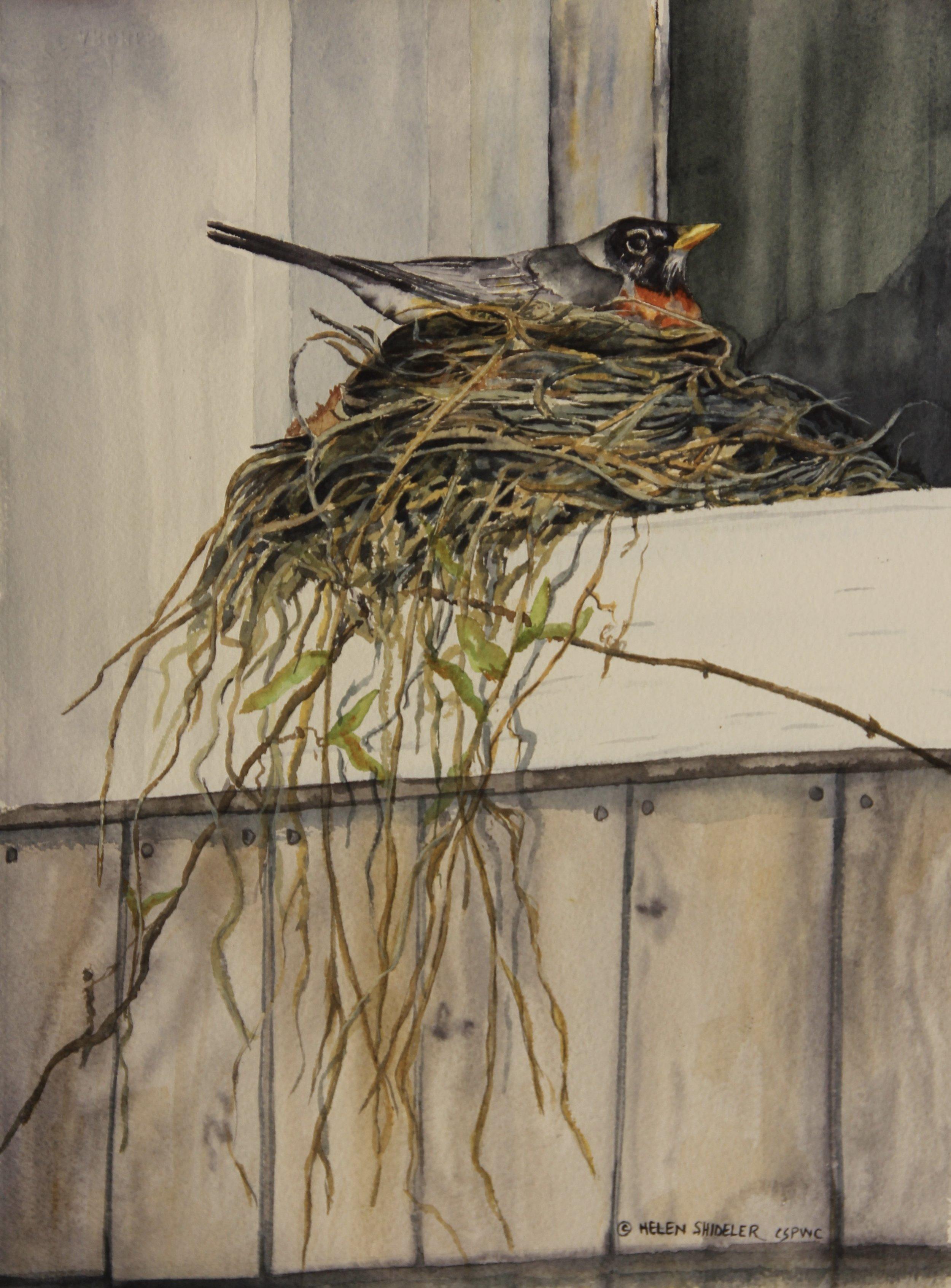 Anxiously Waiting by Helen Shideler