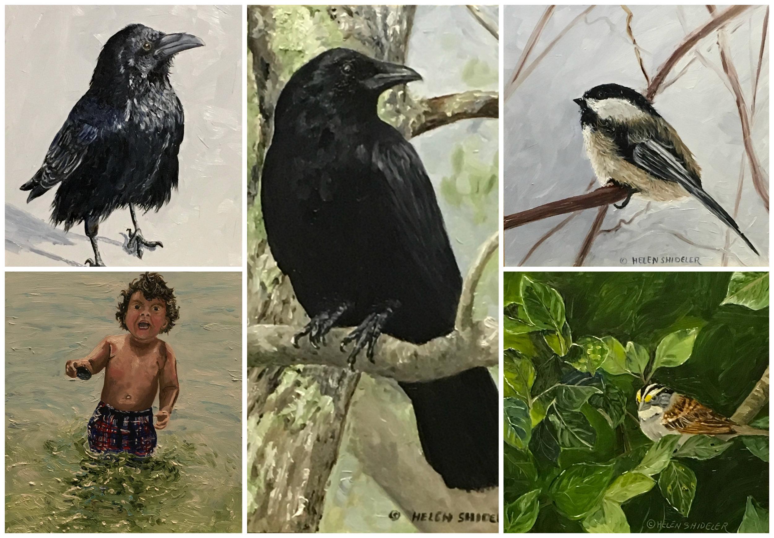 Week 1 30 paintings in 30 days Shideler