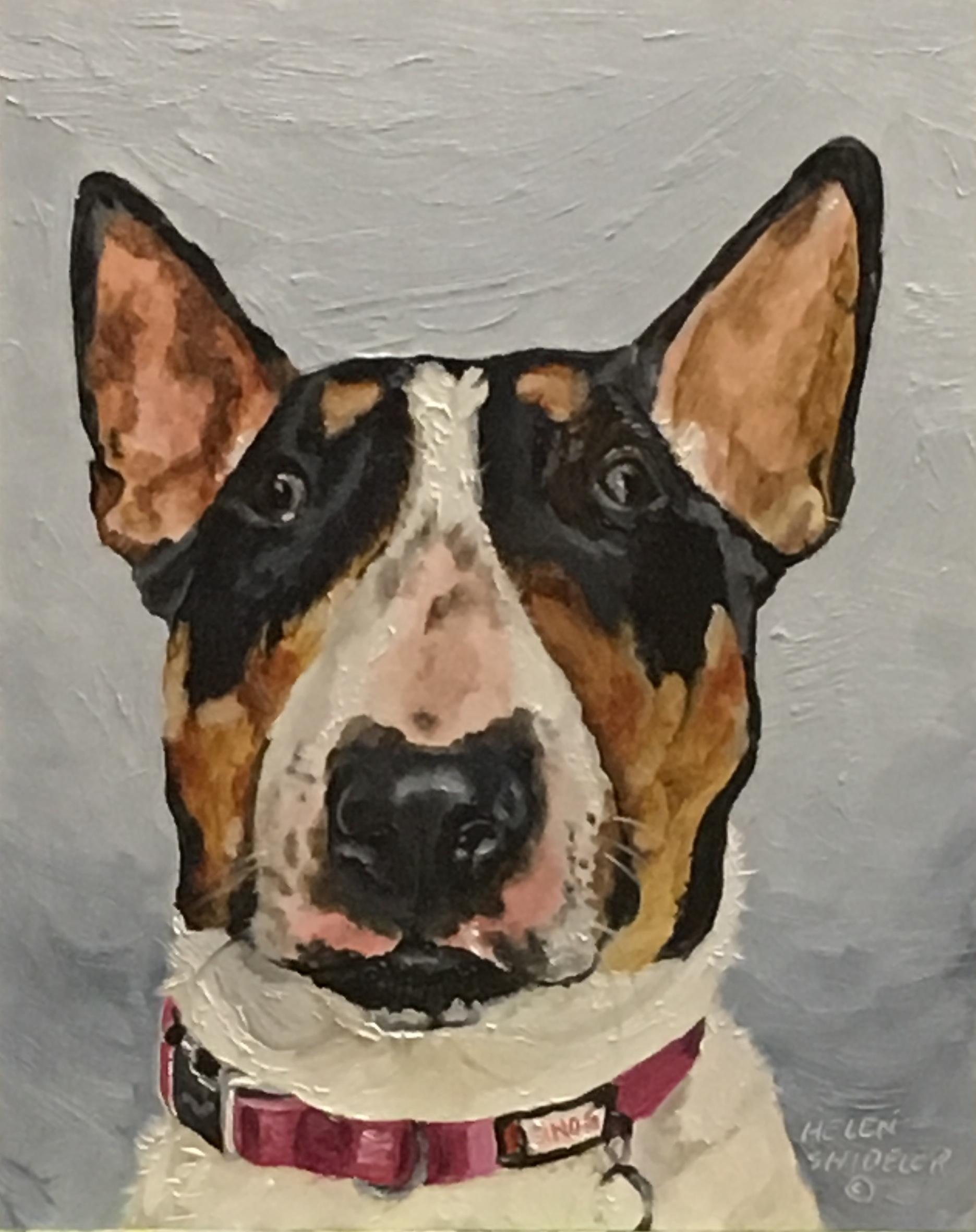 Phoebe by Helen Shideler