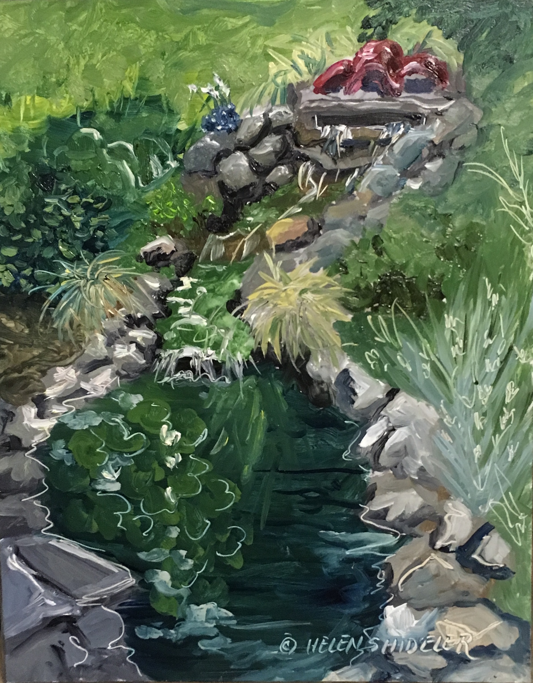 Backyard garden by Shideler