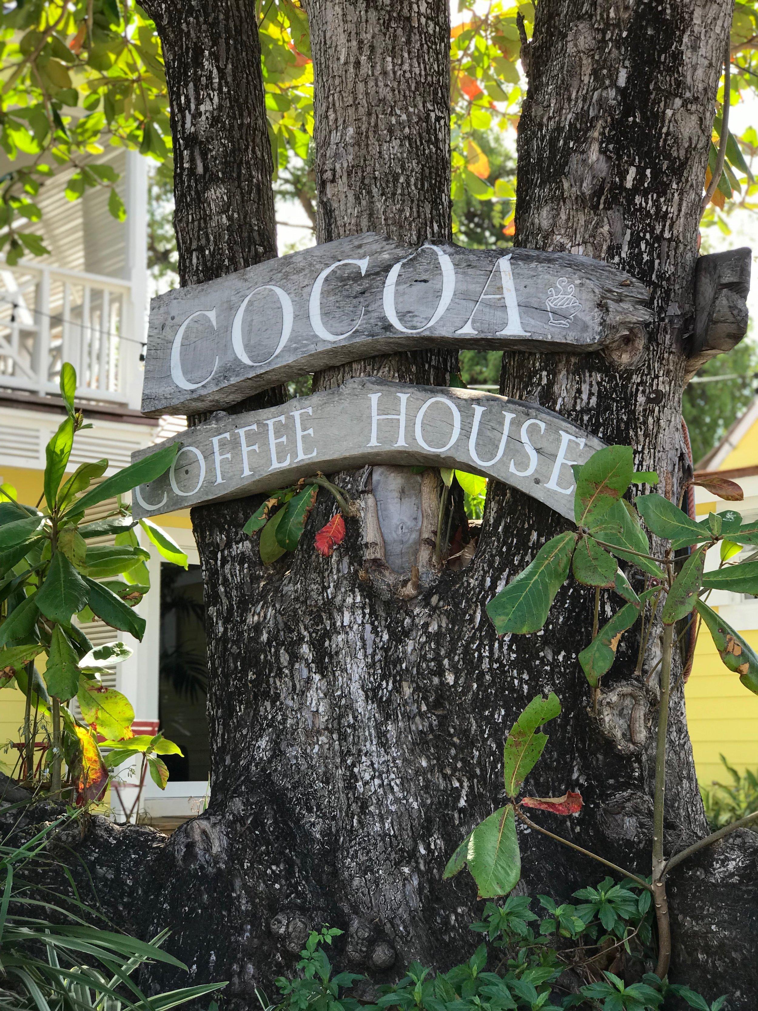 cocoa 1.JPG