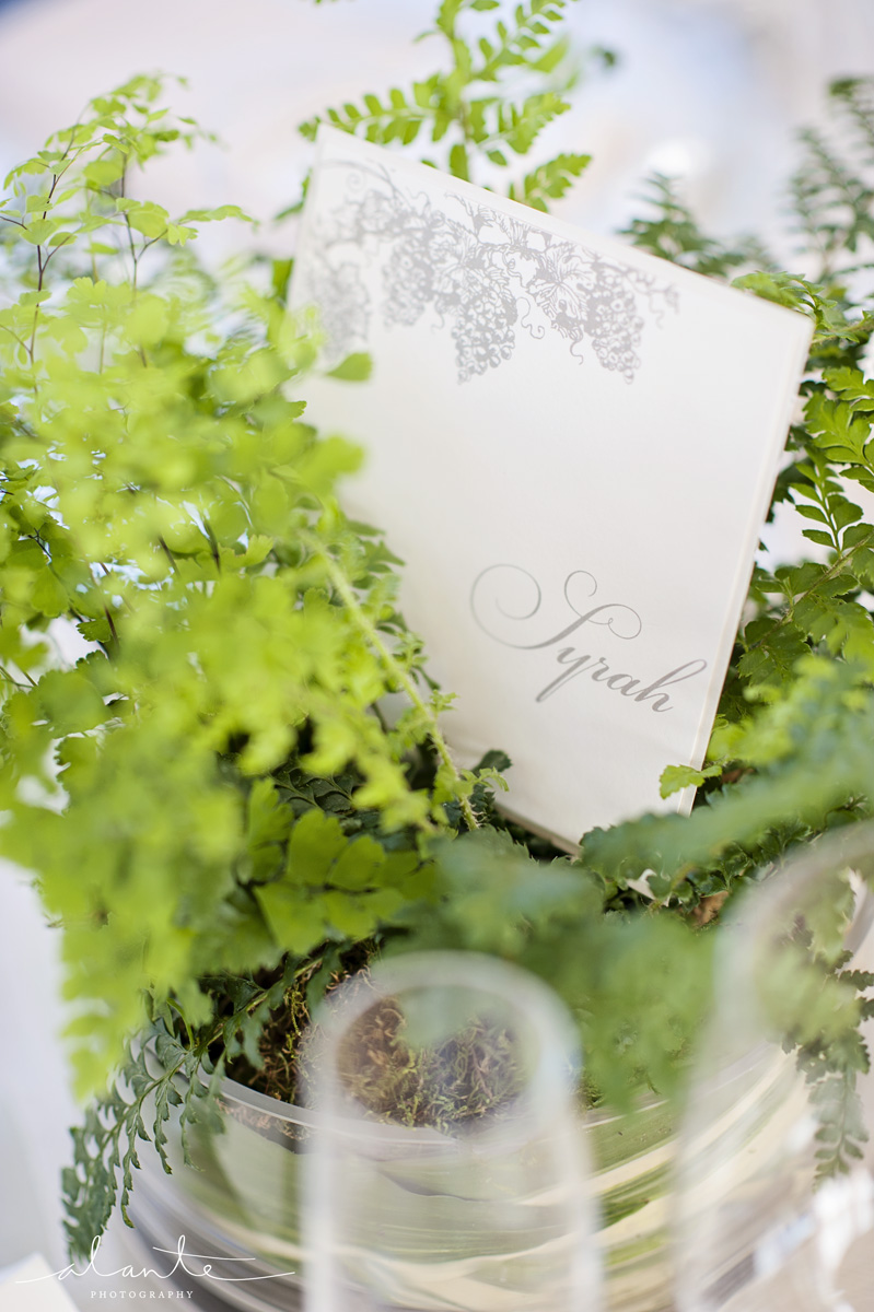 Vintner's Door Woodinville Wedding | Event Success | Alante Photography