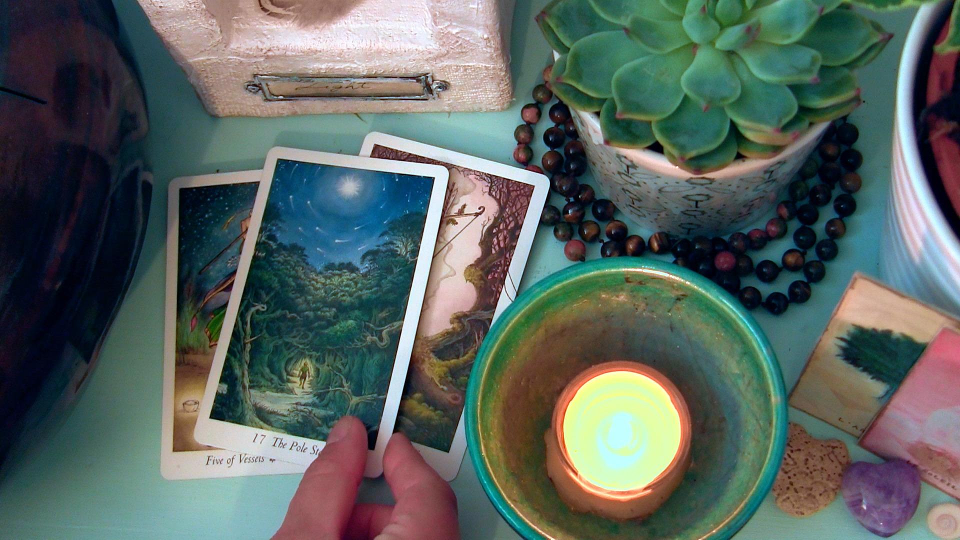 (Cards: the Wildwood Tarot)