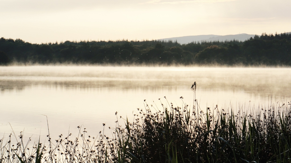 Misty morning by the lake, Ireland, county Clare - Laly Mille