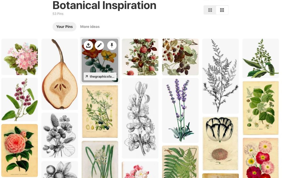 Laly Mille Botanical Inspiration on Pinterest