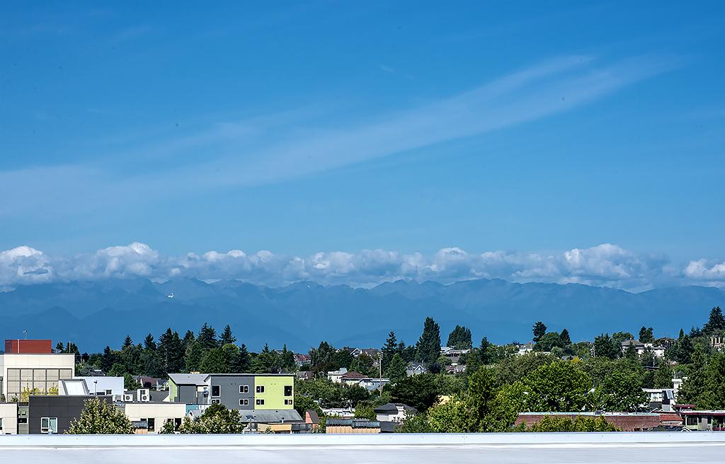 roof top view 1.jpg