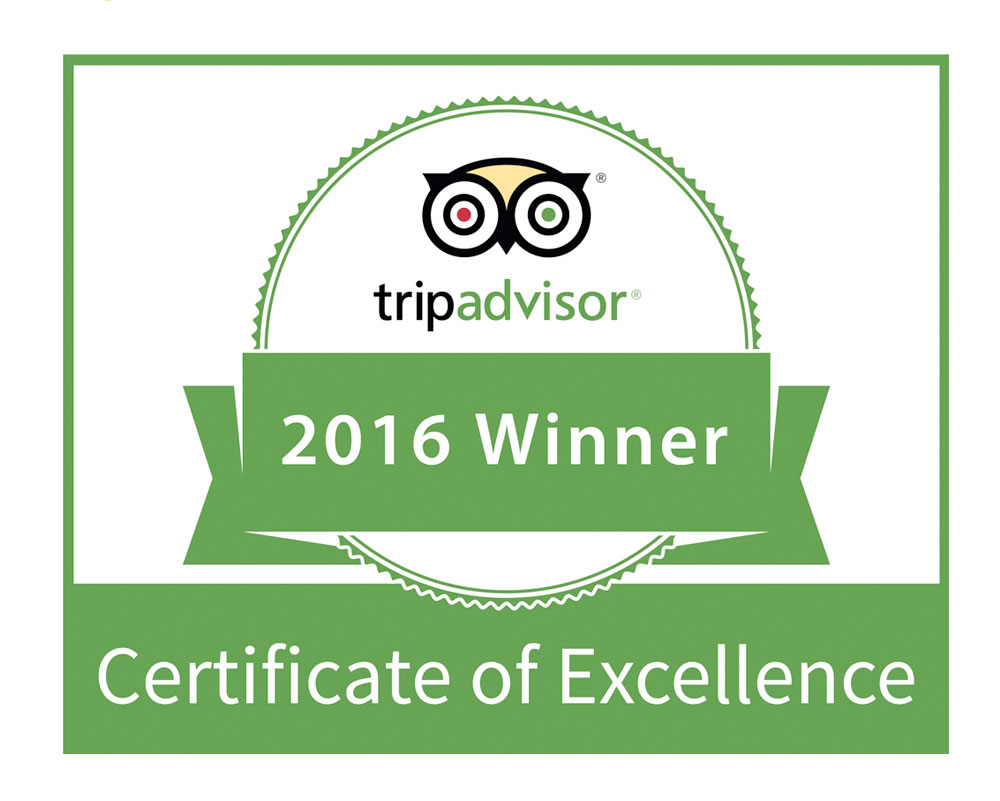 Certificate of Excellence 2016 -