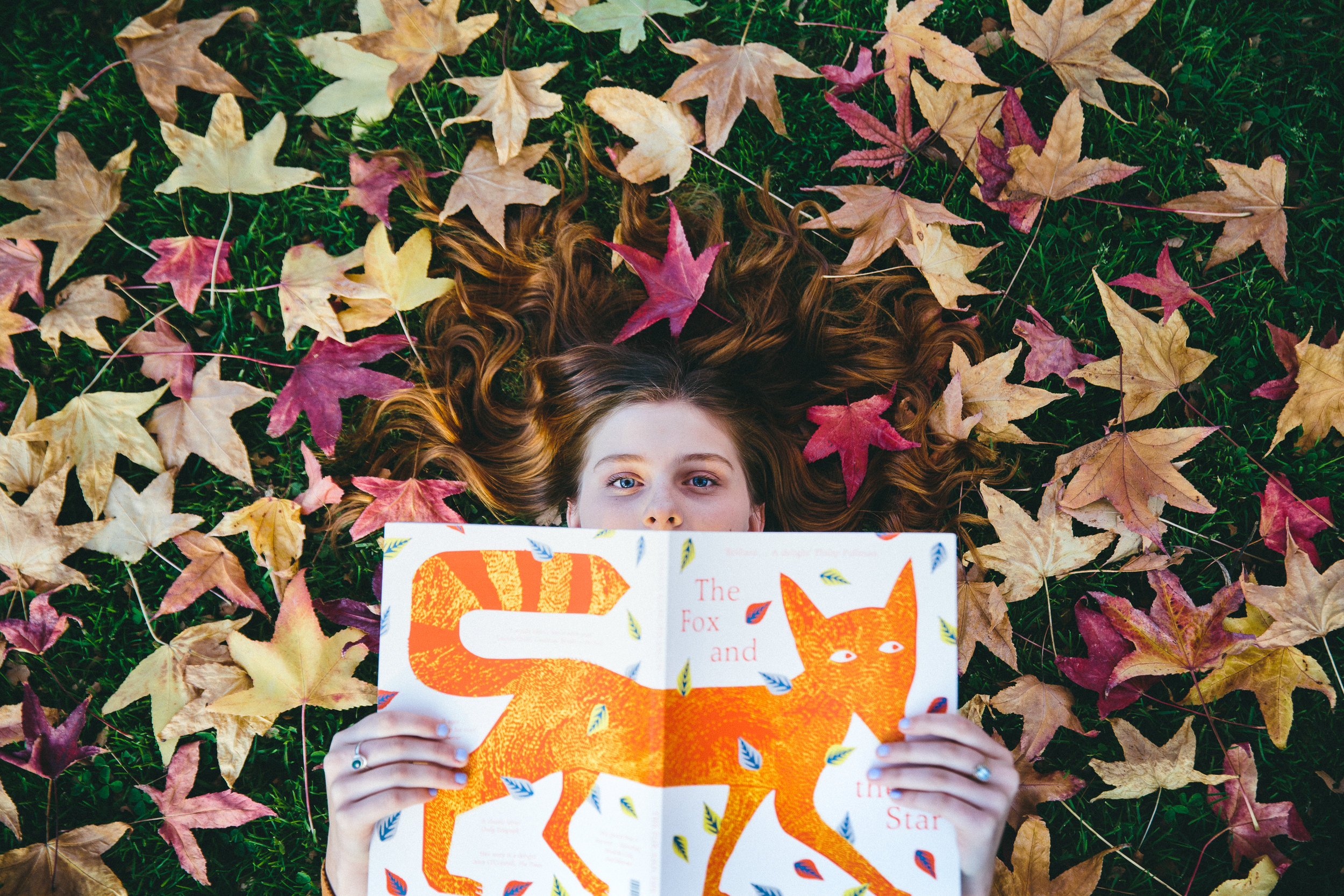 The Fox and the Stars.jpg
